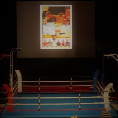 Album photos du gala de boxe du 25 mars 2017 à Toul organisé par le Noble Art Toulois